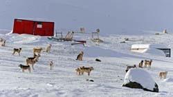Weltreise Etappe Grönland - Bild 14