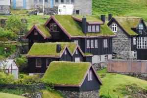 Weltreise Etappe Island und Färöer - Bild 8