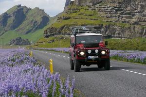 Weltreise Etappe Island und Färöer - Bild 17