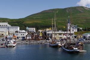 Weltreise Etappe Island und Färöer - Bild 97