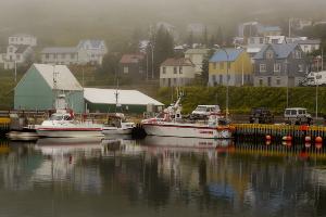 Weltreise Etappe Island und Färöer - Bild 116