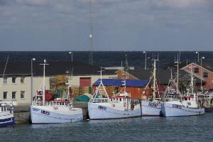 Weltreise Etappe Island und Färöer - Bild 137