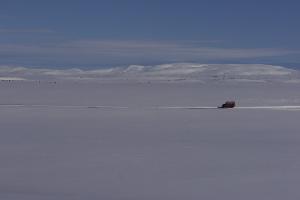 Weltreise Etappe Island und Färöer - Bild 162