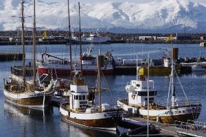 Weltreise Etappe Island und Färöer - Bild 193