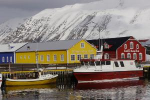 Weltreise Etappe Island und Färöer - Bild 201