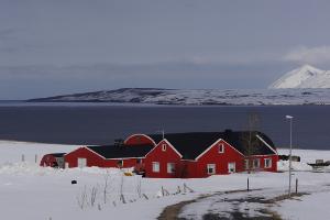 Weltreise Etappe Island und Färöer - Bild 205