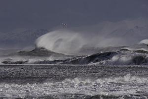 Weltreise Etappe Island und Färöer - Bild 217