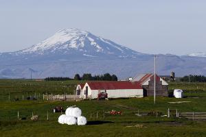 Weltreise Etappe Island und Färöer - Bild 243