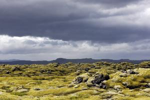 Weltreise Etappe Island und Färöer - Bild 259