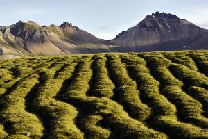 Weltreise Etappe Island und Färöer - Bild 298