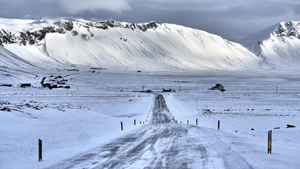 Weltreise Etappe Island und Färöer - Bild 326