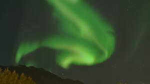 Weltreise Etappe Island und Färöer - Bild 329