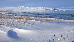 Weltreise Etappe Island und Färöer - Bild 333